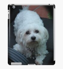 Cute Dog 6 iPad Case/Skin
