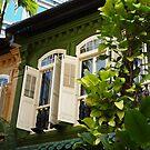 Singapore Shophouses by sailgirl