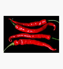 Chilli 1 Photographic Print