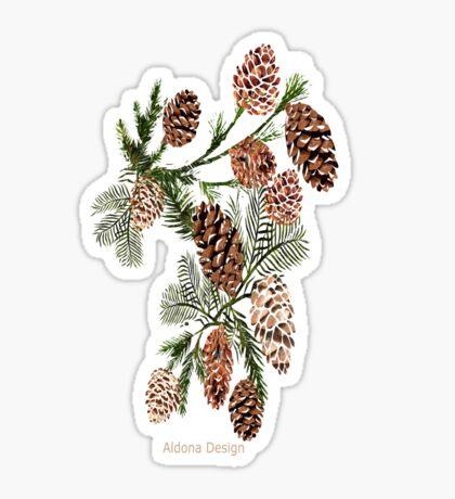 Pine cones ( 553 Views) Sticker