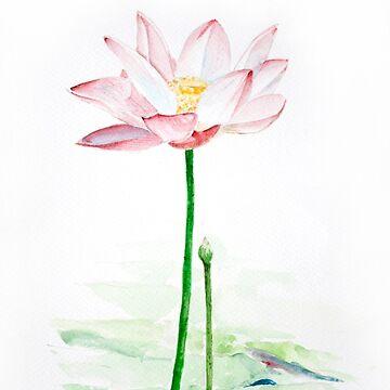 Lotus 2015 (1)  by BengLim