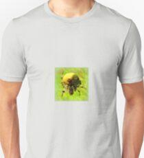 Araneus quadratus Unisex T-Shirt