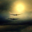 Warrior's Return  by larry flewers