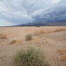 Death Valley NP, California (USA) - Dust & Clouds by Rob Schoon