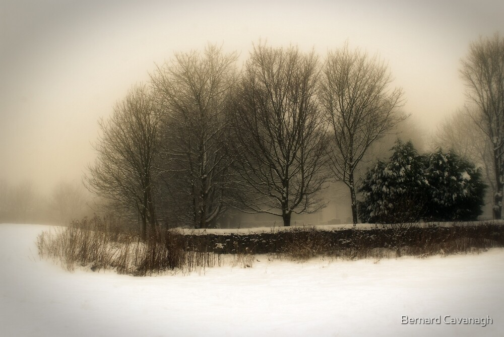 Winter 01 by Bernard Cavanagh