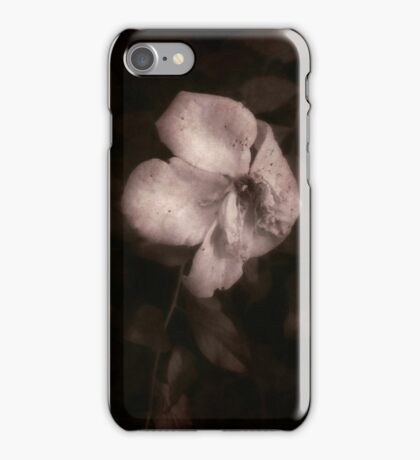 In the Evening iPhone Case/Skin