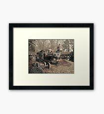 Old General Lee Framed Print