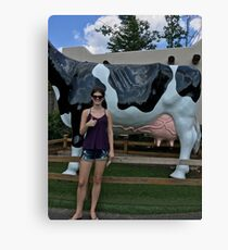 Awkwardness with a Cow Utter Canvas Print