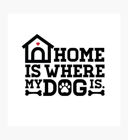 Home Is Where My Dog Is Photographic Print
