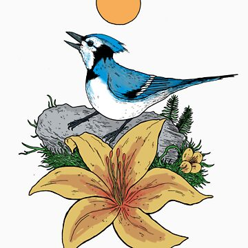 Blue Jay by Wolphins