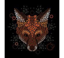 Fox Face Photographic Print