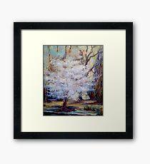 FUMC Cherry Trees, oil on canvas Framed Print