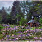 Cabin in the Lupine - Small Works Edition by Wayne King