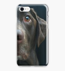 Labrador Profile iPhone Case/Skin