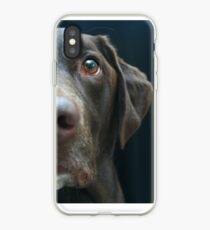 Labrador Profile iPhone Case