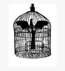 Caged Batgirl  Photographic Print