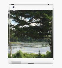 Lily Pad Lake, Pawtuckaway iPad Case/Skin