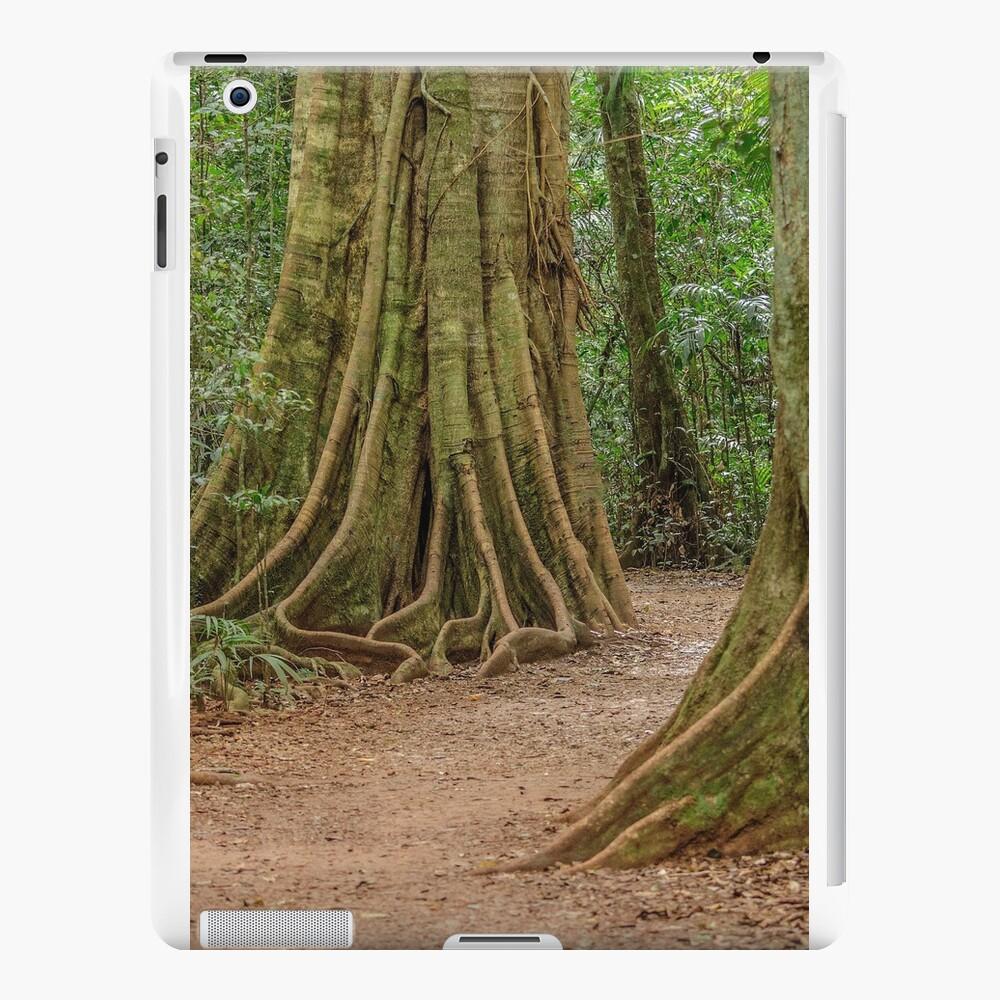 Regenwald Mary Cairncross Park iPad-Hüllen & Klebefolien