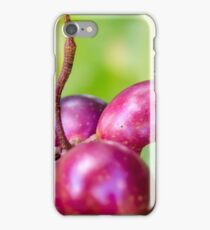 Grape Vine 4 iPhone Case/Skin