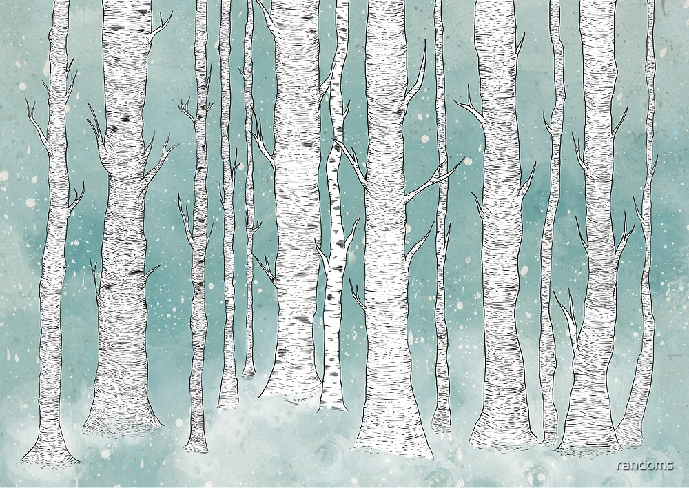 Birch Forest by randoms