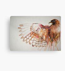 hawk I Canvas Print