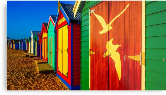 Brighton Bath Huts Lined Up in a Row by sjphotocomau