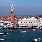 The Piazzetta San Marco, Venice by Mark Wilson