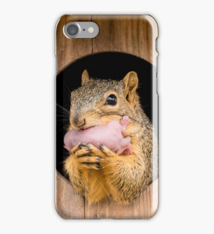 Look who's nesting in my duck box iPhone Case/Skin