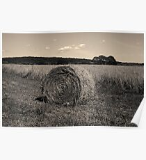 Hay Bale I Toned Poster
