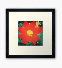 VINTAGE RED FLOWER INDIA Framed Print
