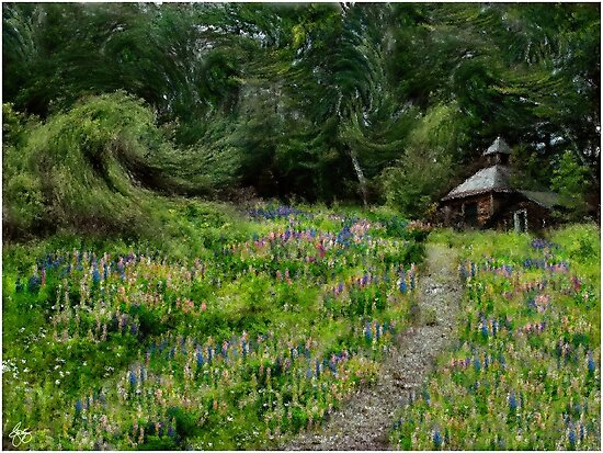Impressions of Lupine by Wayne King