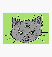 3 Eyed Kitty Flash-LIMITED TIME ONLY Photographic Print