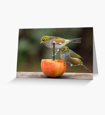 Hey what's up...  Greeting Card