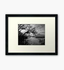 San Jacinto Wildlife Area  Framed Print