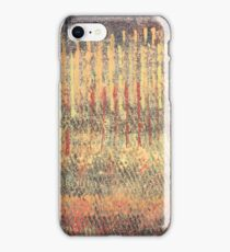 Autumn Straws iPhone Case/Skin