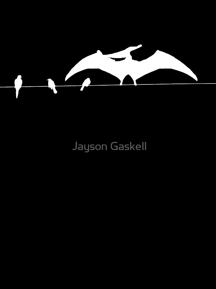 Birds on a wire by Jayson Gaskell