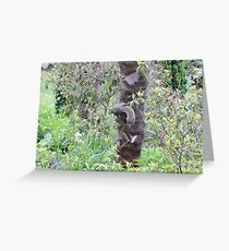 Camouflaged  Greeting Card
