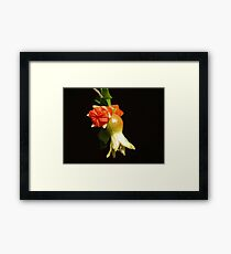 UNIQUE BEAUTIFUL FLOWER - SERIES 10 Framed Print