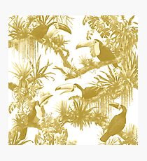 Toucans and Bromeliads - Spicy Mustard Photographic Print