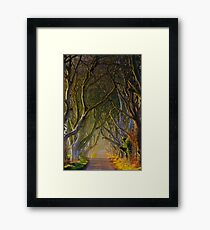 The Dark Hedges  Game of Thrones County Antrim  Northern Ireland Framed Print