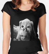 Falkor The Luck Dragon From The Neverending Story Design Women's Fitted Scoop T-Shirt