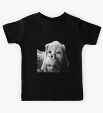 Falkor The Luck Dragon From The Neverending Story Design Kids Clothes