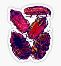 Pink Bugs Sticker