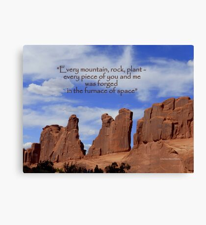 Every Rock Canvas Print