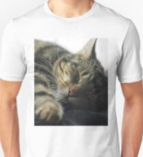 Sleeping Elsa Tabby Cat Unisex T-Shirt