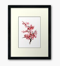 Flower Cherry Blossom Watercolor Painting Illustration Image Picture Framed Print