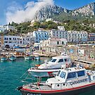 Capri, Italy by Michelle Lovegrove