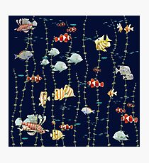 Fish all over Photographic Print