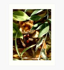 European Hamster under Shadows Art Print