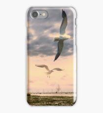 Seagulls Dance at Sunset iPhone Case/Skin